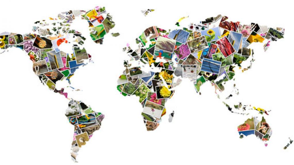 deciding when to go global Becoming a global company is an impressive accomplishment, but not every business is cut out for the challenge there are many things to think about before you sell and market your products or.