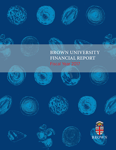 President's Financial Report