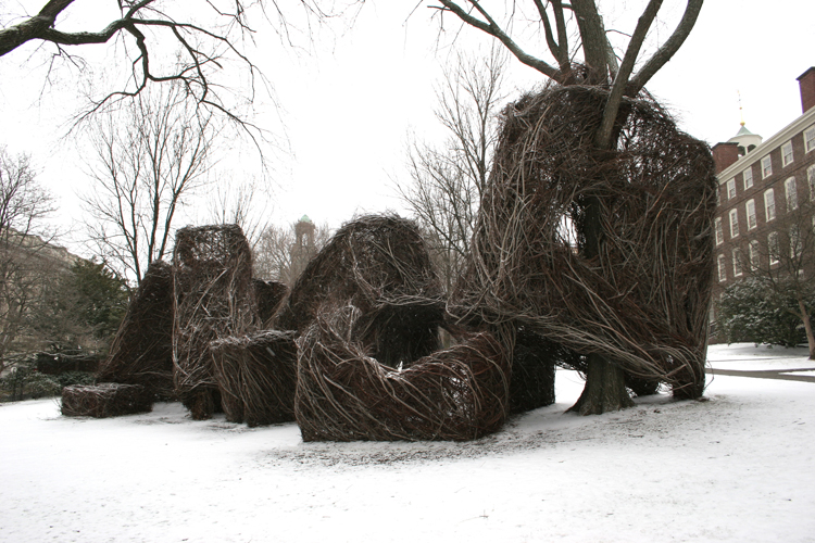 Patrick Dougherty, Square Roots, 2007
