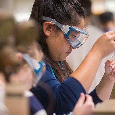 Undergraduate education in pathology and laboratory medicine at Brown University