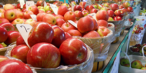 Close up of baskets of red apples at a farmer's market in Providence, RI
