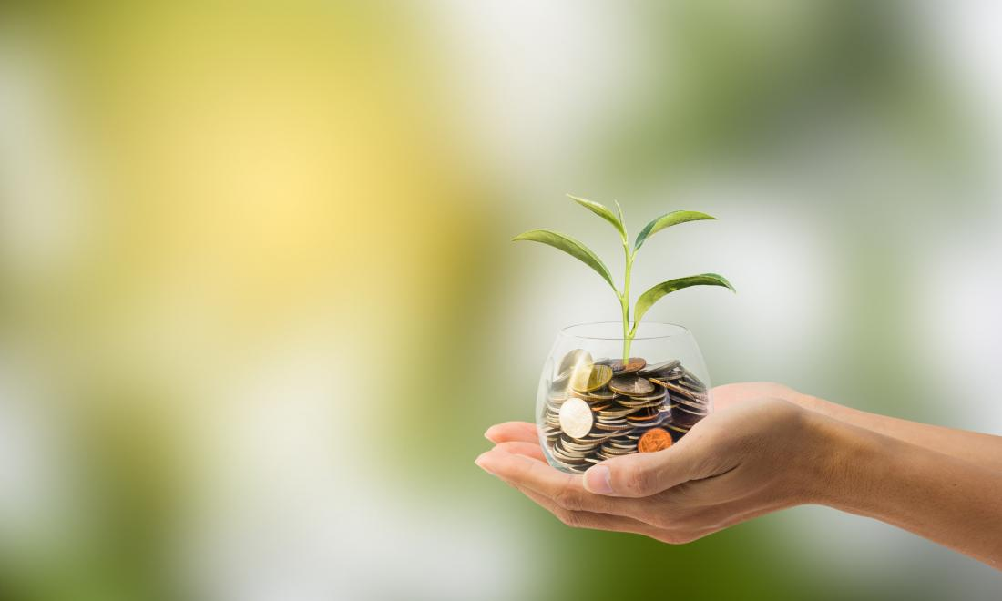 hand holding glass filled with coins and a tree sprout