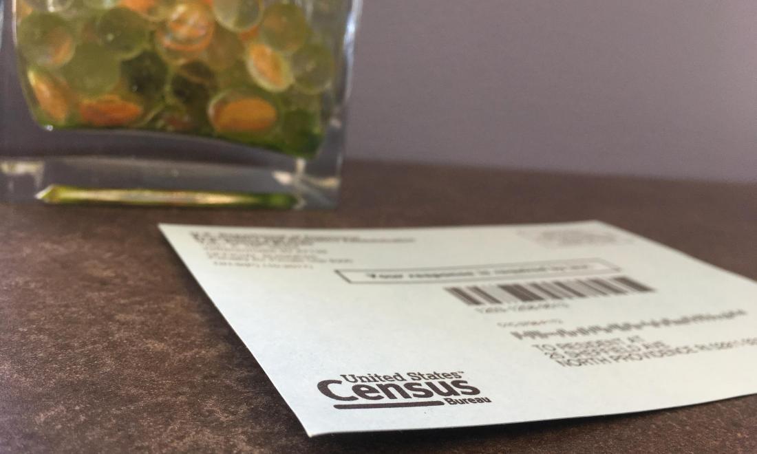 census test mailing envelope