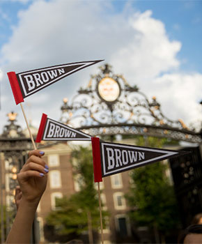 Brown banners