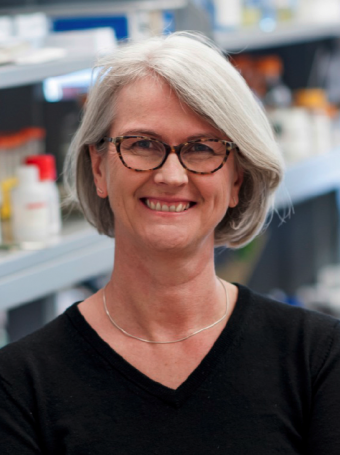 Professor Diane Lipscombe (photo credit: Peter Goldberg)