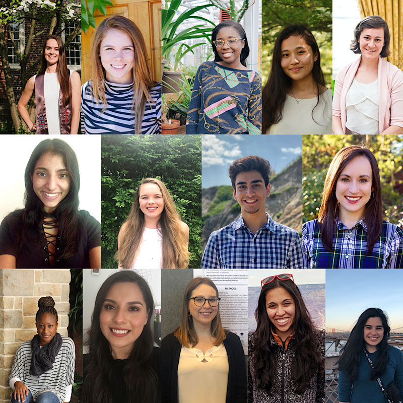 Collage of 2019 summer scholars