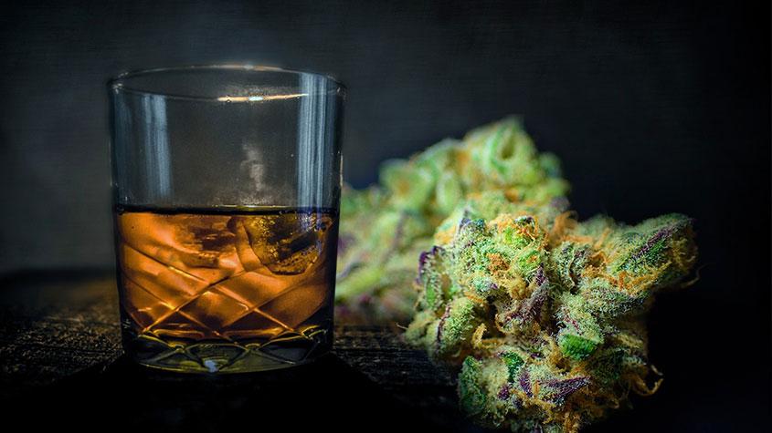 Алкоголь марихуаной конопля вызывает привыкание