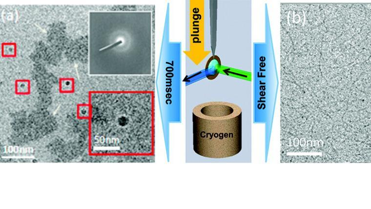 Shear Free and Blotless Cryo-TEM Imaging: A New Method for Probing Early Evolution of Nanostructures