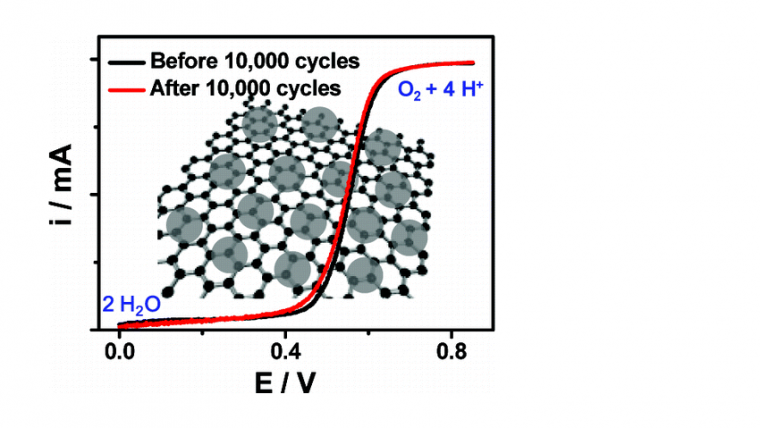 FePt Nanoparticles Assembled on Graphene as Enhanced Catalyst for Oxygen Reduction Reaction