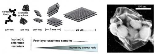 Left: sample panel for studying geometric effects in the biological response to 2D materials; Right: crumpled graphene nanosacks mitigate toxic responses to encapsulated nanoparticles
