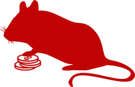 Silhouette of a mouse standing on coins